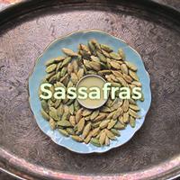 SASSAFRAS-THUMB
